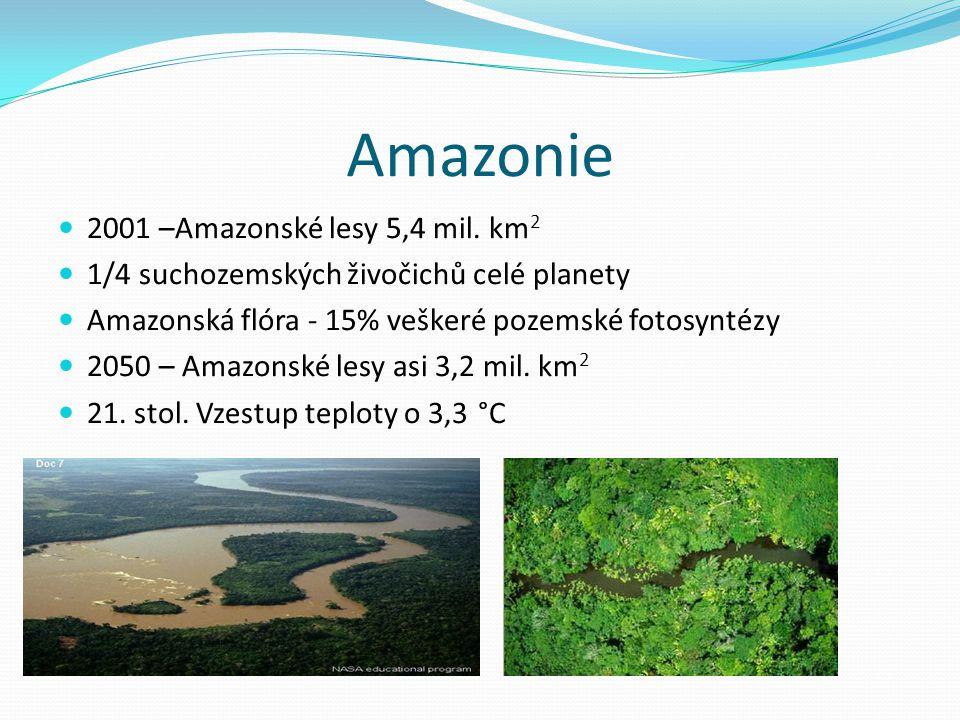 Amazonie 2001 –Amazonské lesy 5,4 mil. km2