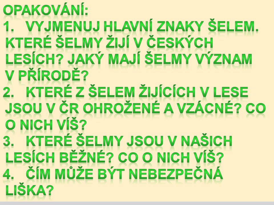 Opakování: 1. Vyjmenuj hlavní znaky šelem. Které šelmy žijí v českých lesích Jaký mají šelmy význam v přírodě