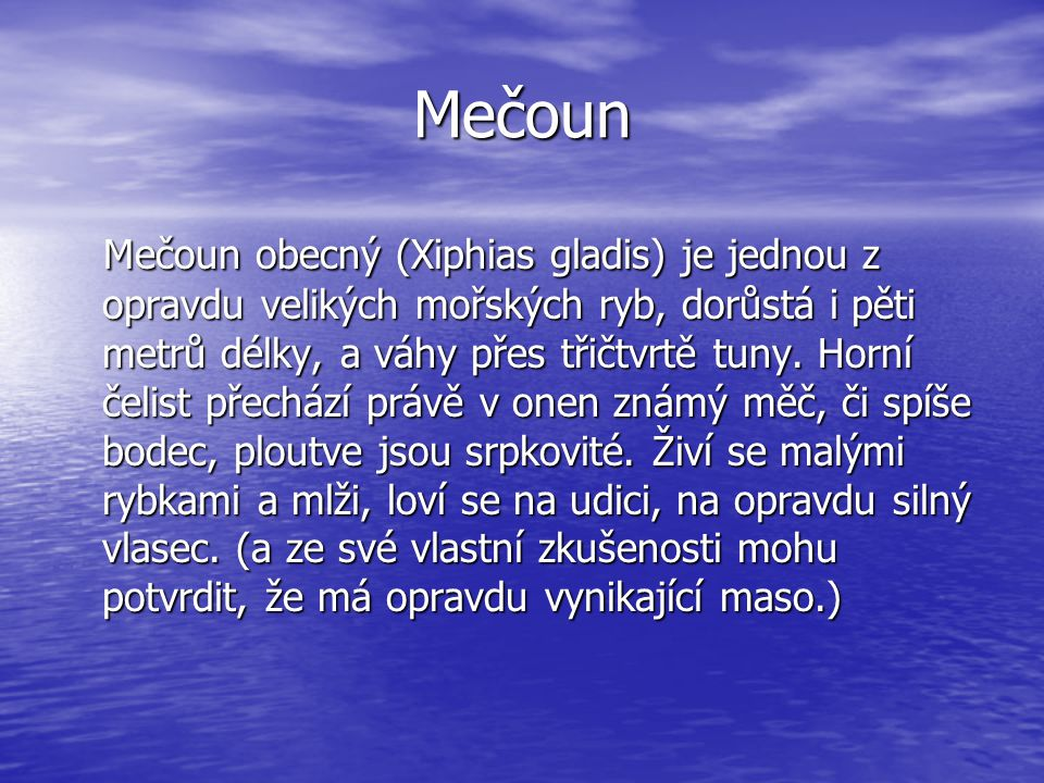 Mečoun