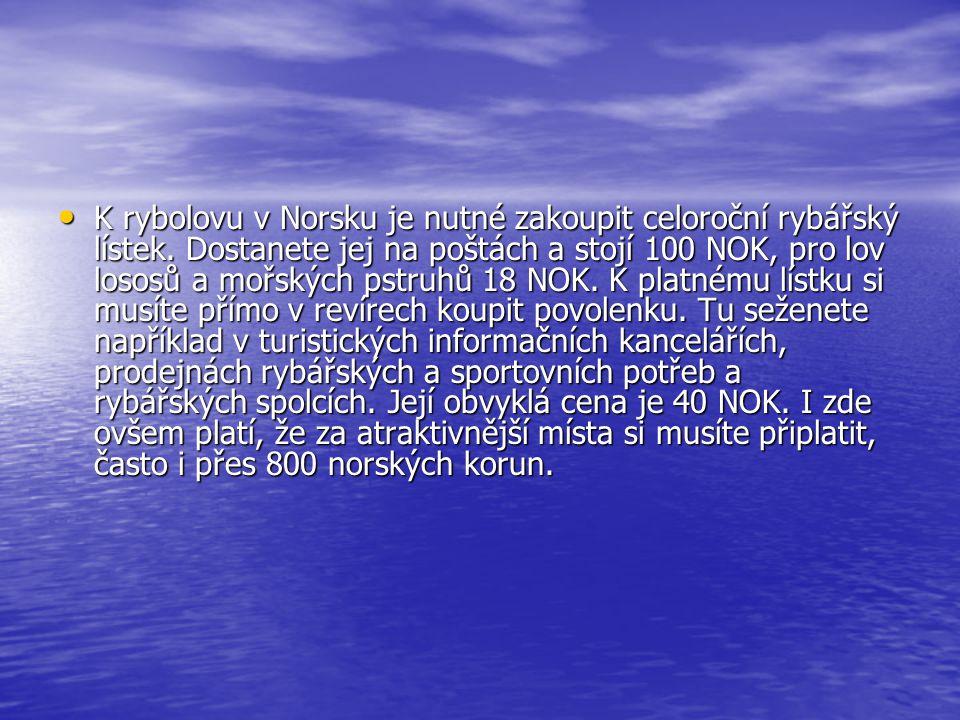 K rybolovu v Norsku je nutné zakoupit celoroční rybářský lístek