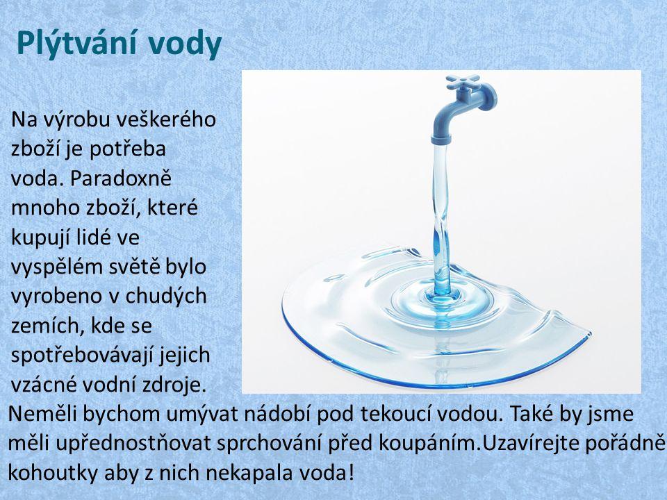 Plýtvání vody