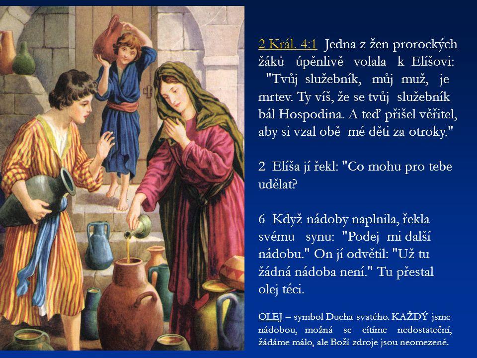 2 Elíša jí řekl: Co mohu pro tebe udělat