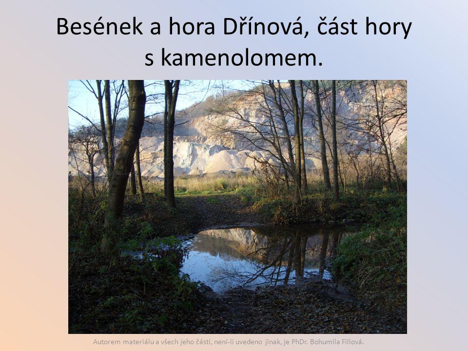 Besének a hora Dřínová, část hory s kamenolomem.