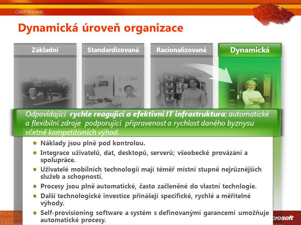 Dynamická úroveň organizace