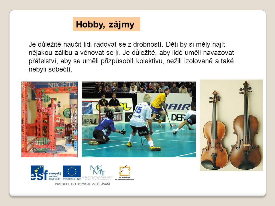 Hobby, zájmy