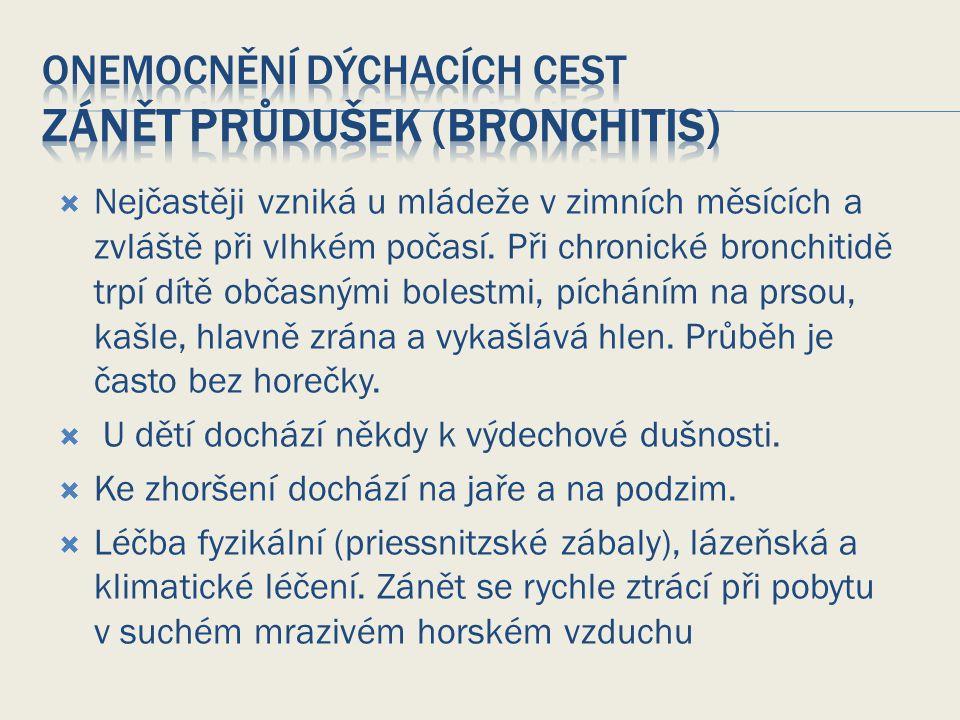 Onemocnění dýchacích cest Zánět průdušek (bronchitis)
