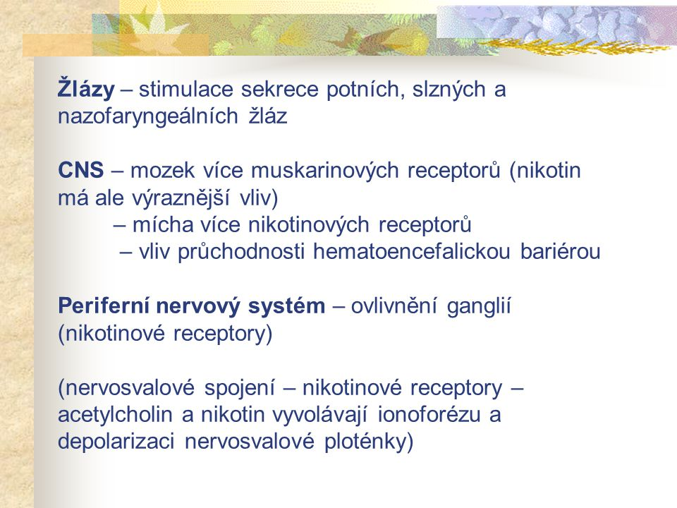 Žlázy – stimulace sekrece potních, slzných a nazofaryngeálních žláz CNS – mozek více muskarinových receptorů (nikotin má ale výraznější vliv) – mícha více nikotinových receptorů – vliv průchodnosti hematoencefalickou bariérou Periferní nervový systém – ovlivnění ganglií (nikotinové receptory) (nervosvalové spojení – nikotinové receptory – acetylcholin a nikotin vyvolávají ionoforézu a depolarizaci nervosvalové ploténky)