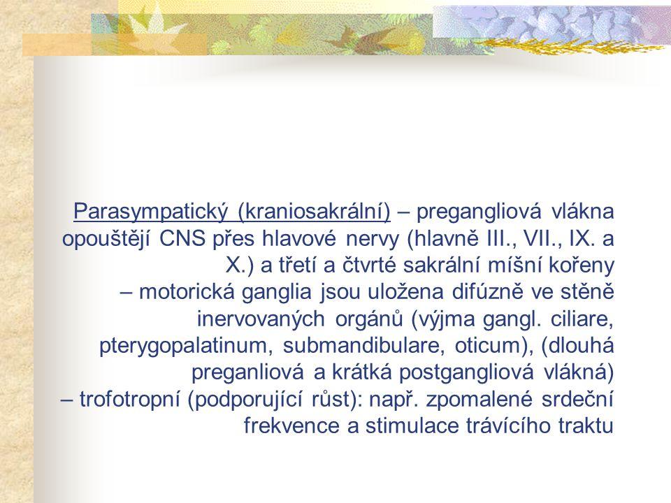 Parasympatický (kraniosakrální) – pregangliová vlákna opouštějí CNS přes hlavové nervy (hlavně III., VII., IX.