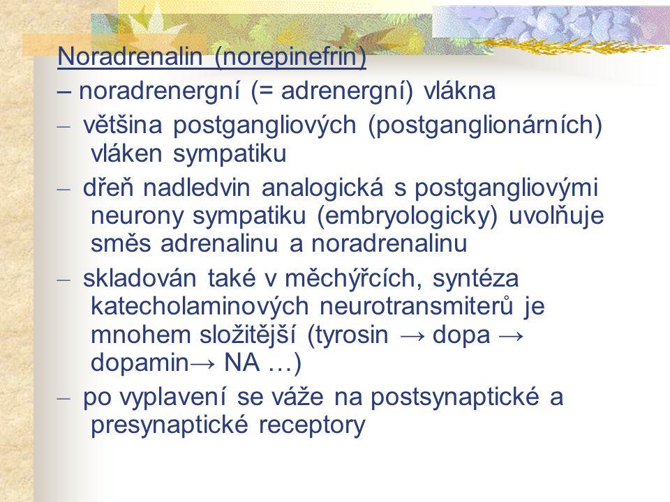 Noradrenalin (norepinefrin)