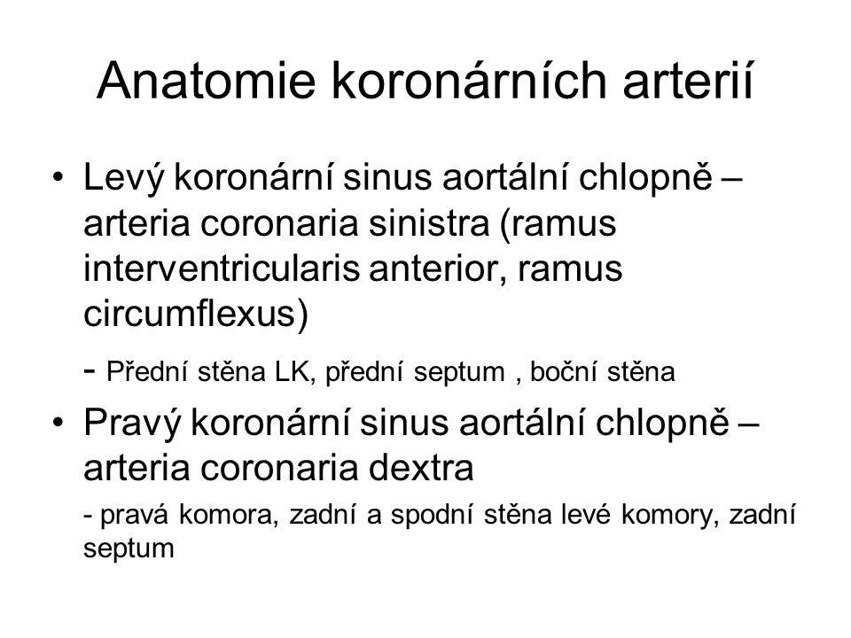 Anatomie koronárních arterií