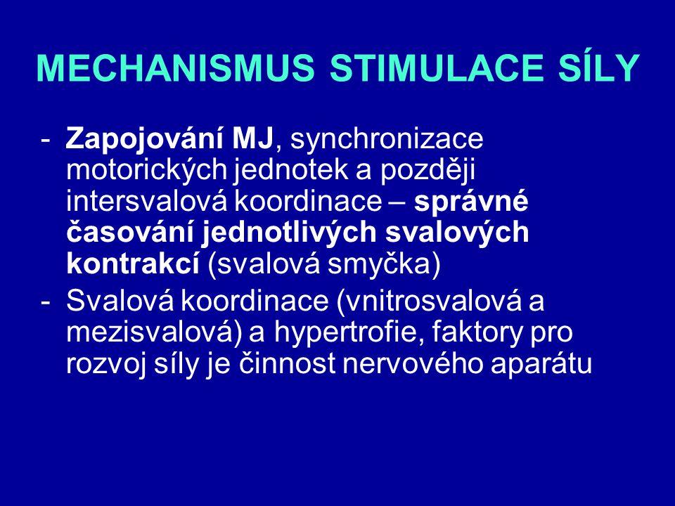 MECHANISMUS STIMULACE SÍLY