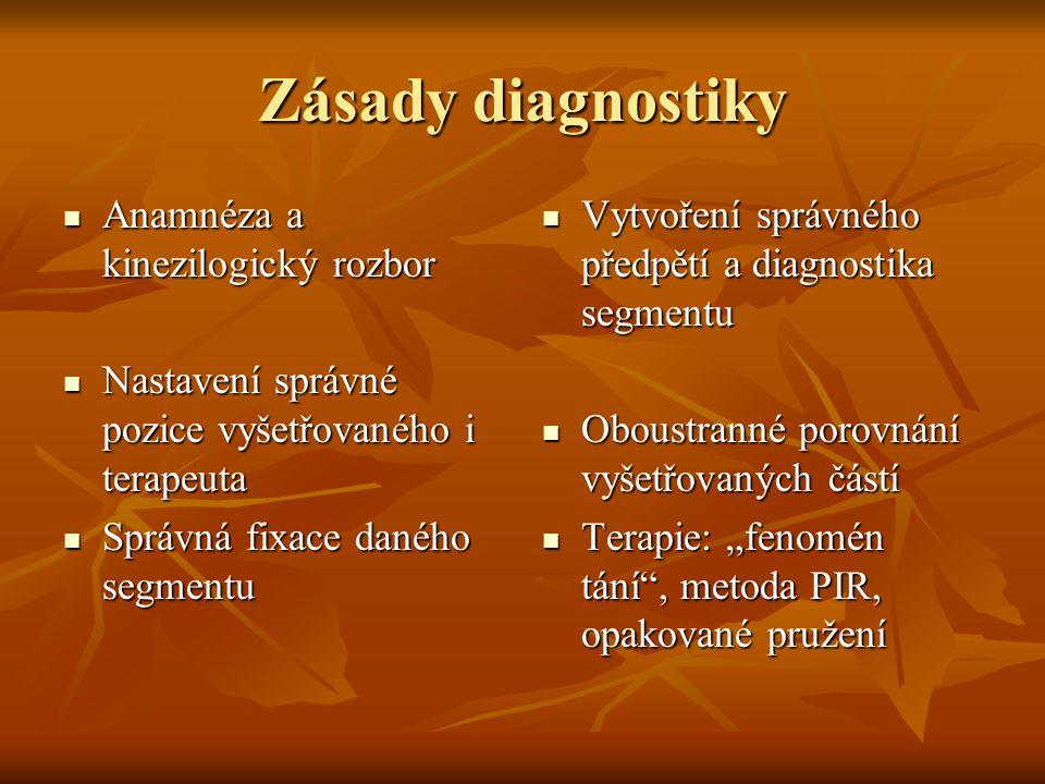 Zásady diagnostiky Anamnéza a kinezilogický rozbor