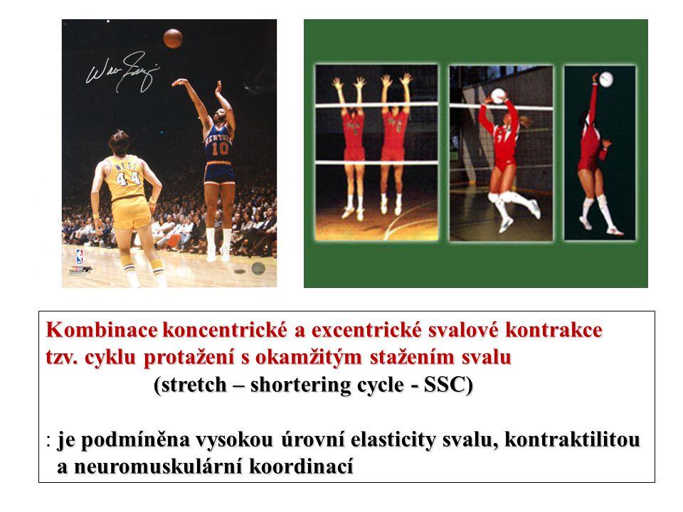 Kombinace koncentrické a excentrické svalové kontrakce