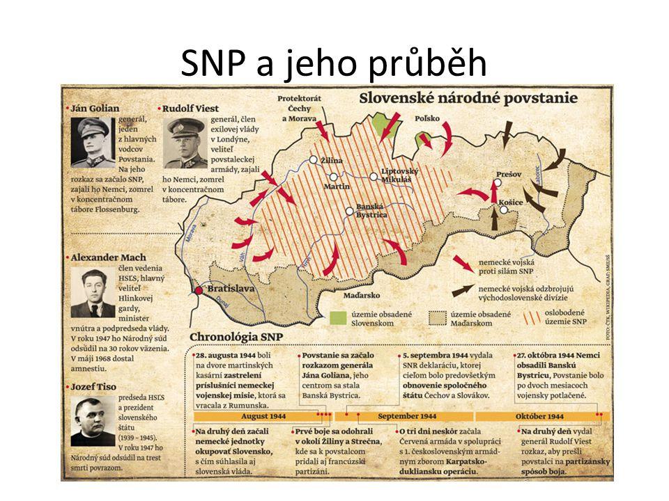 SNP a jeho průběh