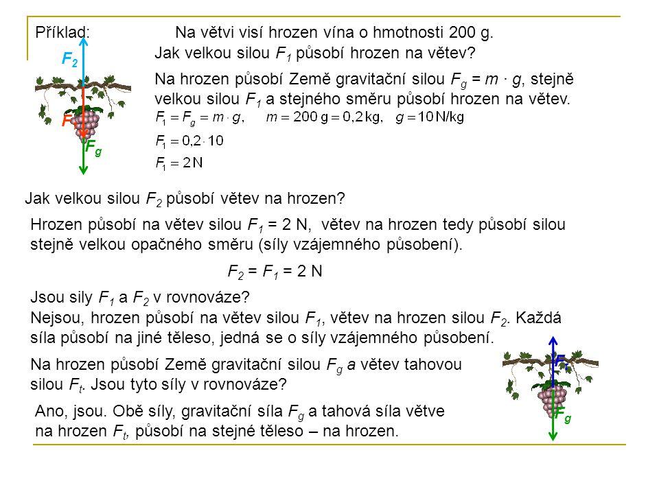 Příklad: Na větvi visí hrozen vína o hmotnosti 200 g. Jak velkou silou F1 působí hrozen na větev F2.