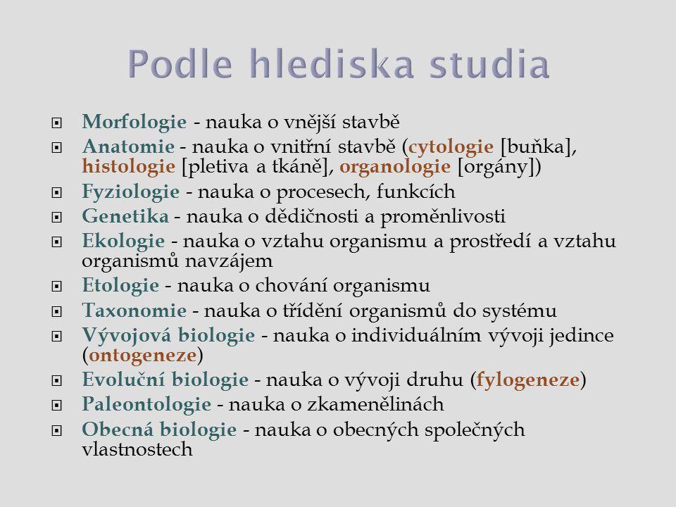 Podle hlediska studia Morfologie - nauka o vnější stavbě
