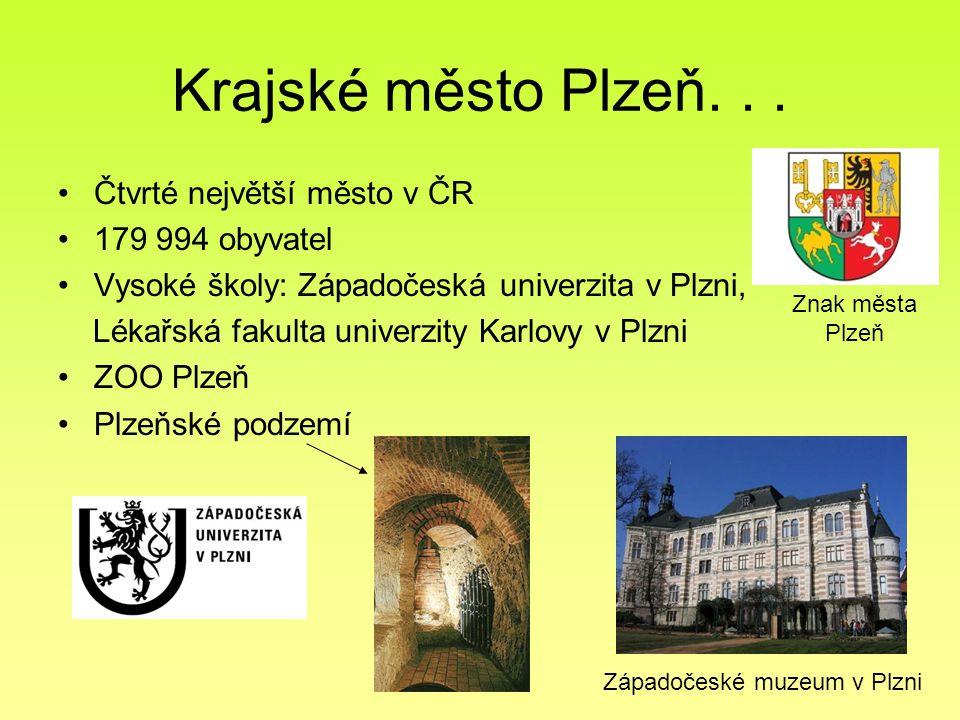 Krajské město Plzeň. . . Čtvrté největší město v ČR 179 994 obyvatel
