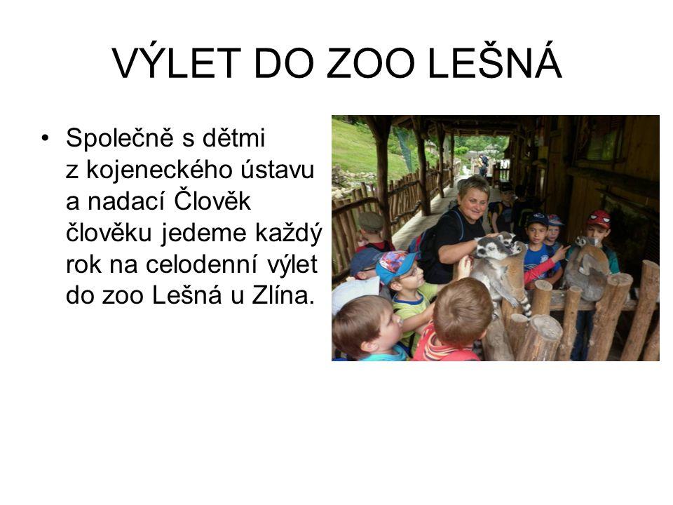 VÝLET DO ZOO LEŠNÁ Společně s dětmi z kojeneckého ústavu a nadací Člověk člověku jedeme každý rok na celodenní výlet do zoo Lešná u Zlína.