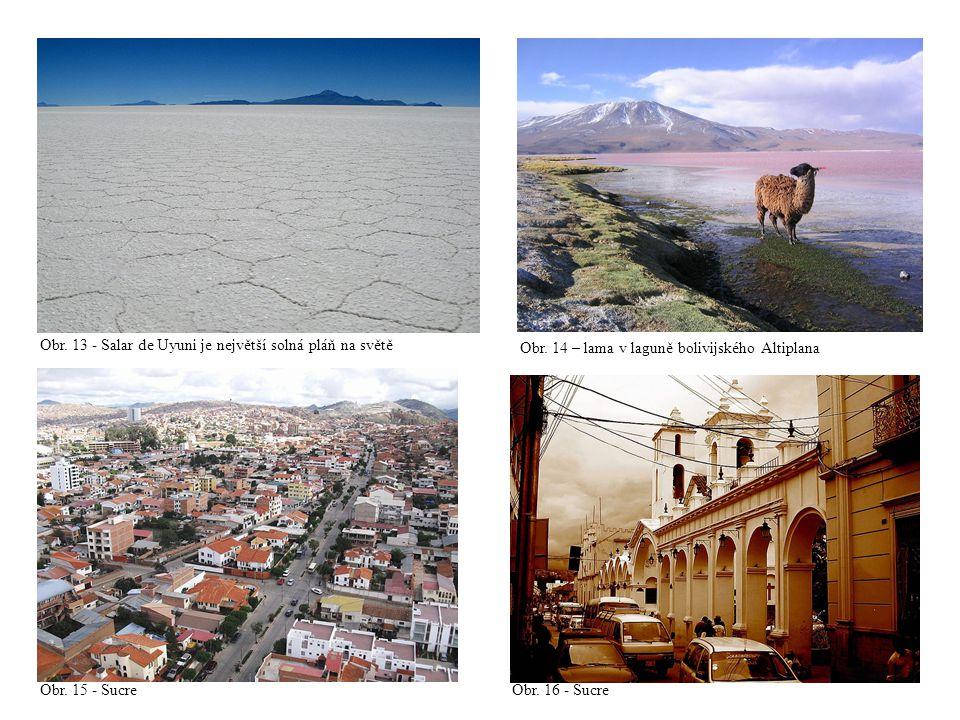 Obr. 13 - Salar de Uyuni je největší solná pláň na světě