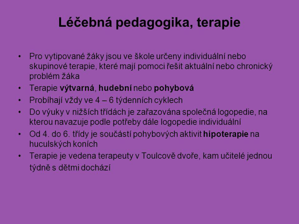 Léčebná pedagogika, terapie