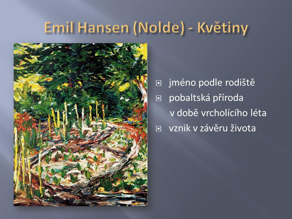 Emil Hansen (Nolde) - Květiny
