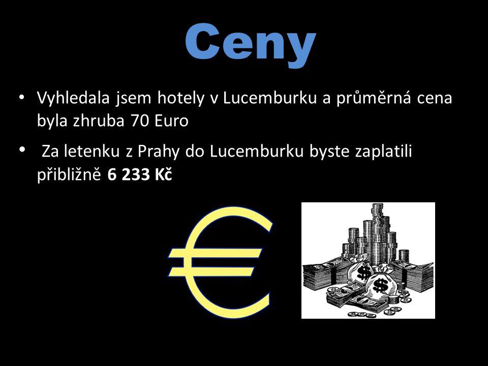 Ceny Vyhledala jsem hotely v Lucemburku a průměrná cena byla zhruba 70 Euro.