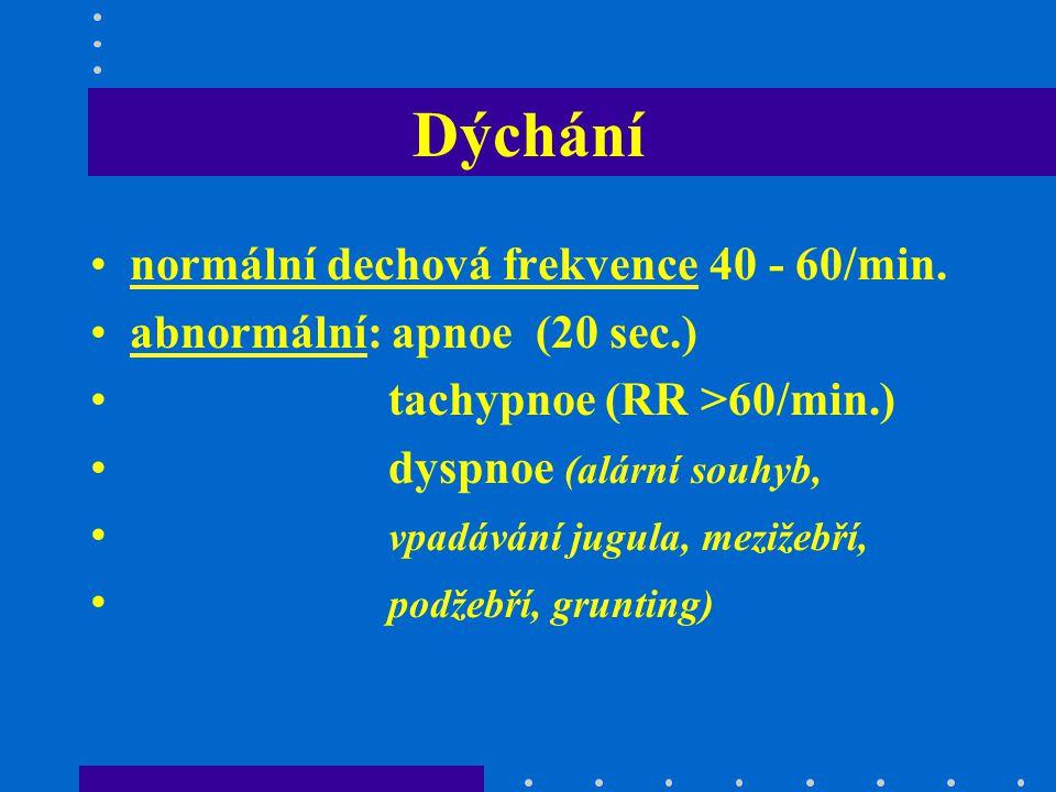 Dýchání normální dechová frekvence 40 - 60/min.