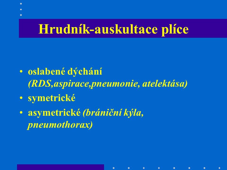 Hrudník-auskultace plíce