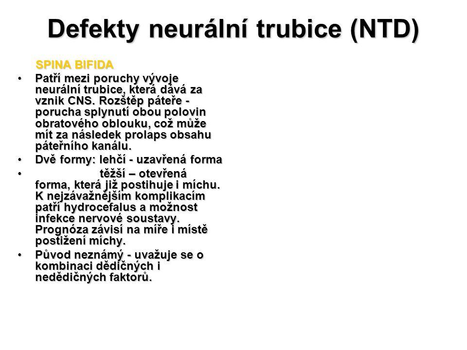 Defekty neurální trubice (NTD)