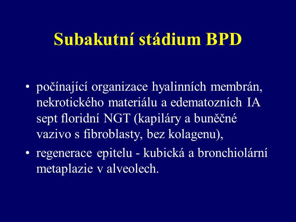 Subakutní stádium BPD