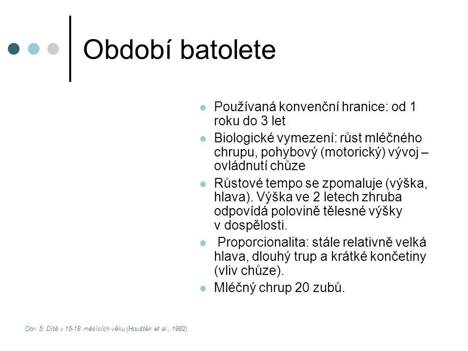 Období batolete Používaná konvenční hranice: od 1 roku do 3 let