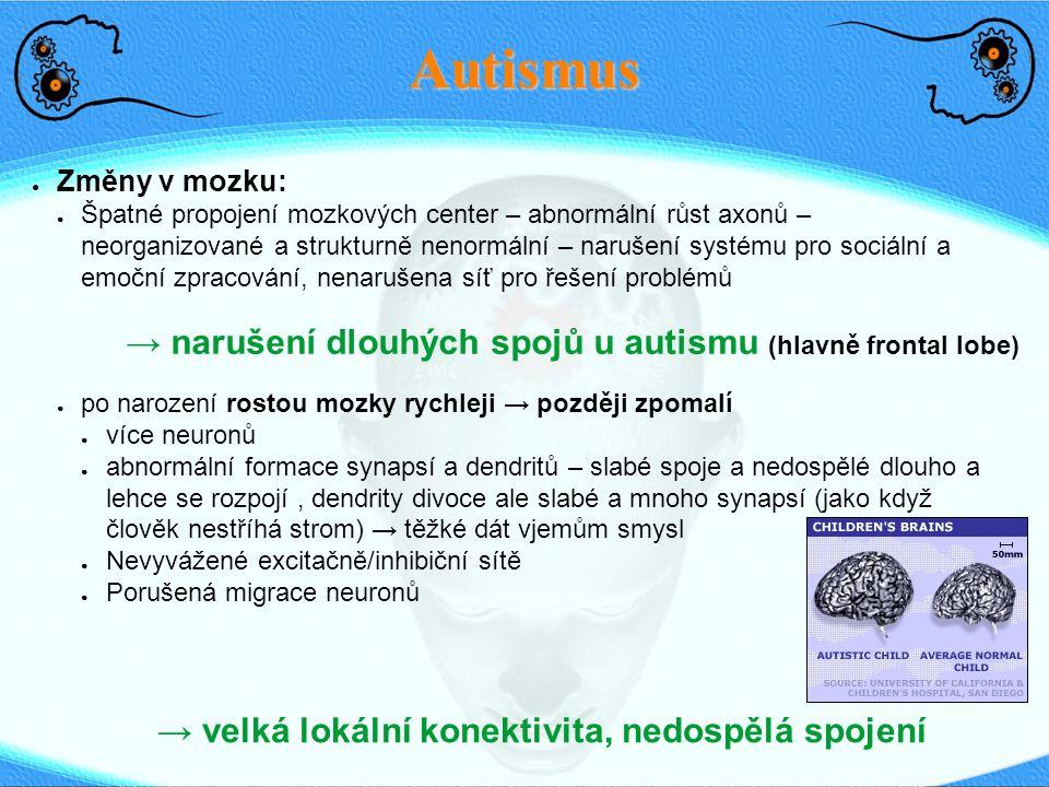 Autismus → narušení dlouhých spojů u autismu (hlavně frontal lobe)