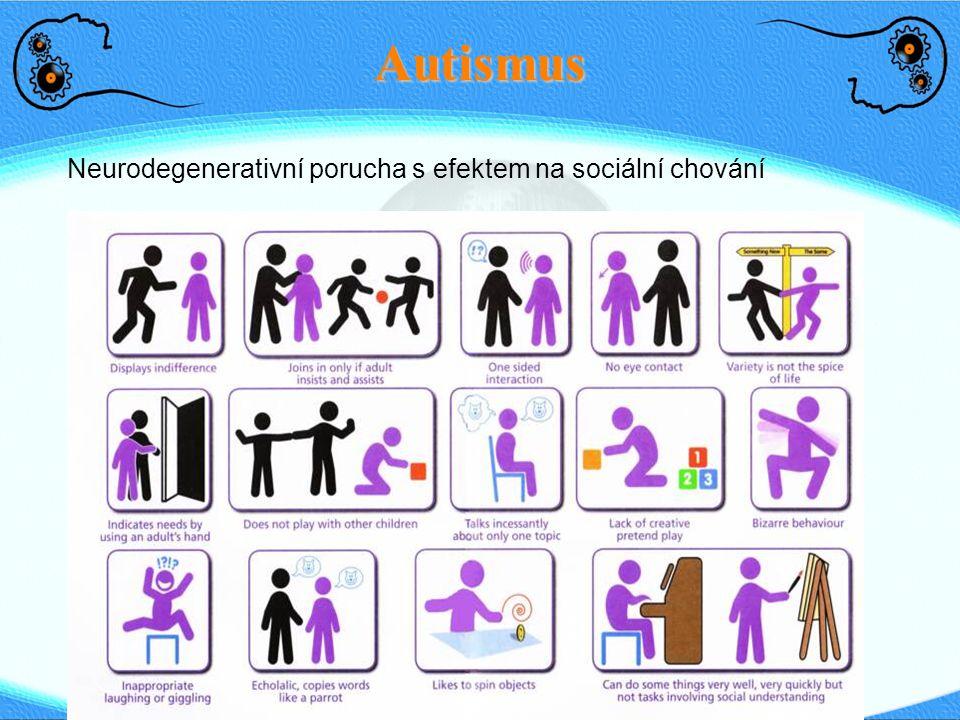 Autismus Neurodegenerativní porucha s efektem na sociální chování 8