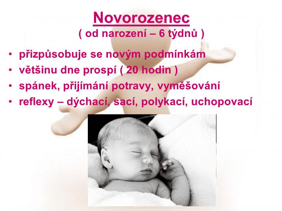 Novorozenec ( od narození – 6 týdnů )