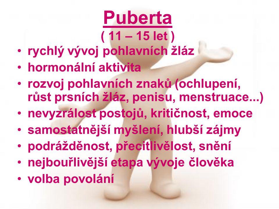 Puberta ( 11 – 15 let ) rychlý vývoj pohlavních žláz