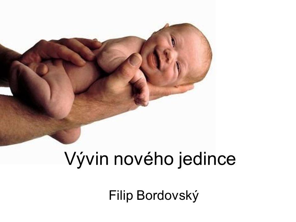 Vývin nového jedince Filip Bordovský