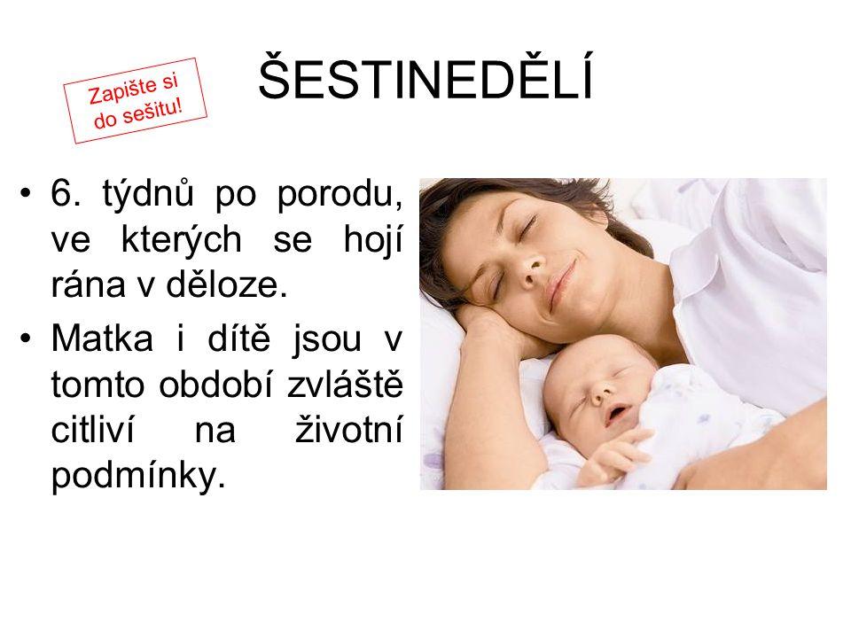 ŠESTINEDĚLÍ 6. týdnů po porodu, ve kterých se hojí rána v děloze.