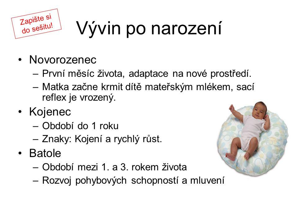 Vývin po narození Novorozenec Kojenec Batole