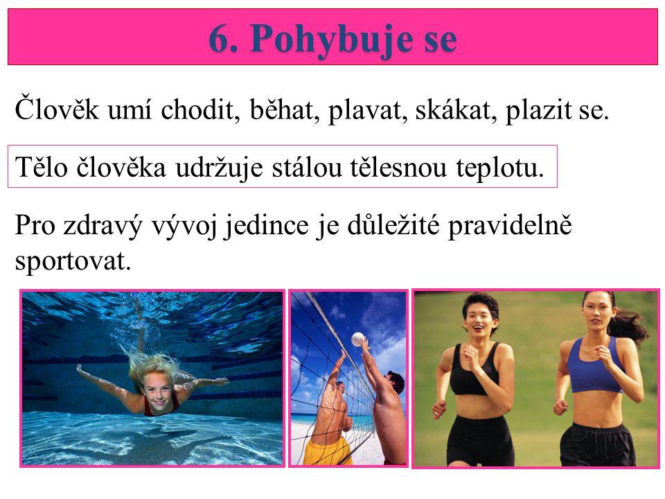 6. Pohybuje se Člověk umí chodit, běhat, plavat, skákat, plazit se.