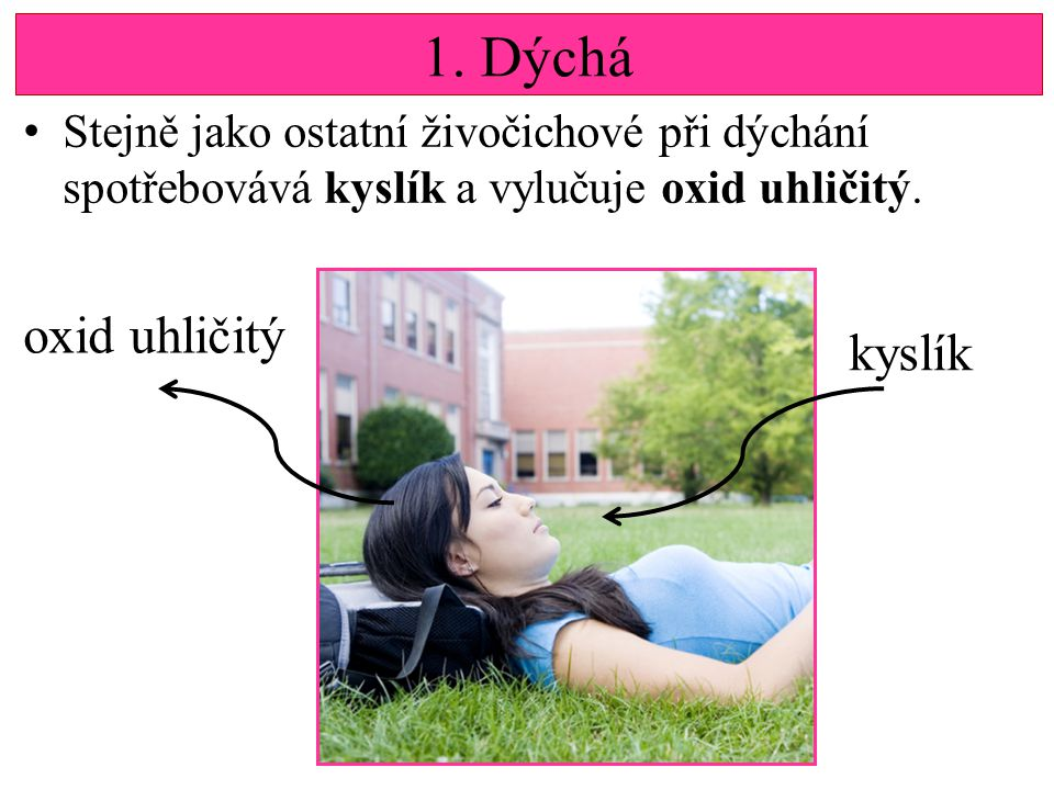 1. Dýchá oxid uhličitý kyslík