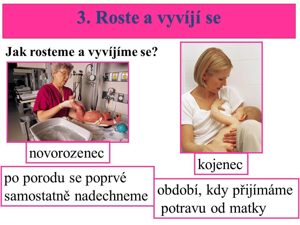 3. Roste a vyvíjí se novorozenec kojenec po porodu se poprvé