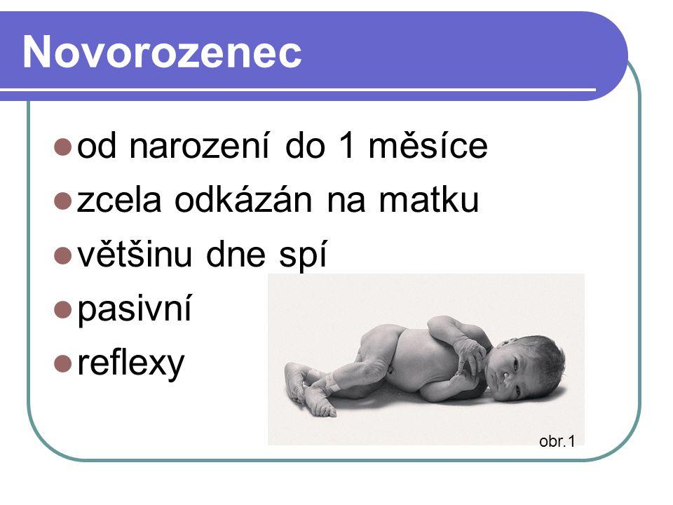 Novorozenec od narození do 1 měsíce zcela odkázán na matku