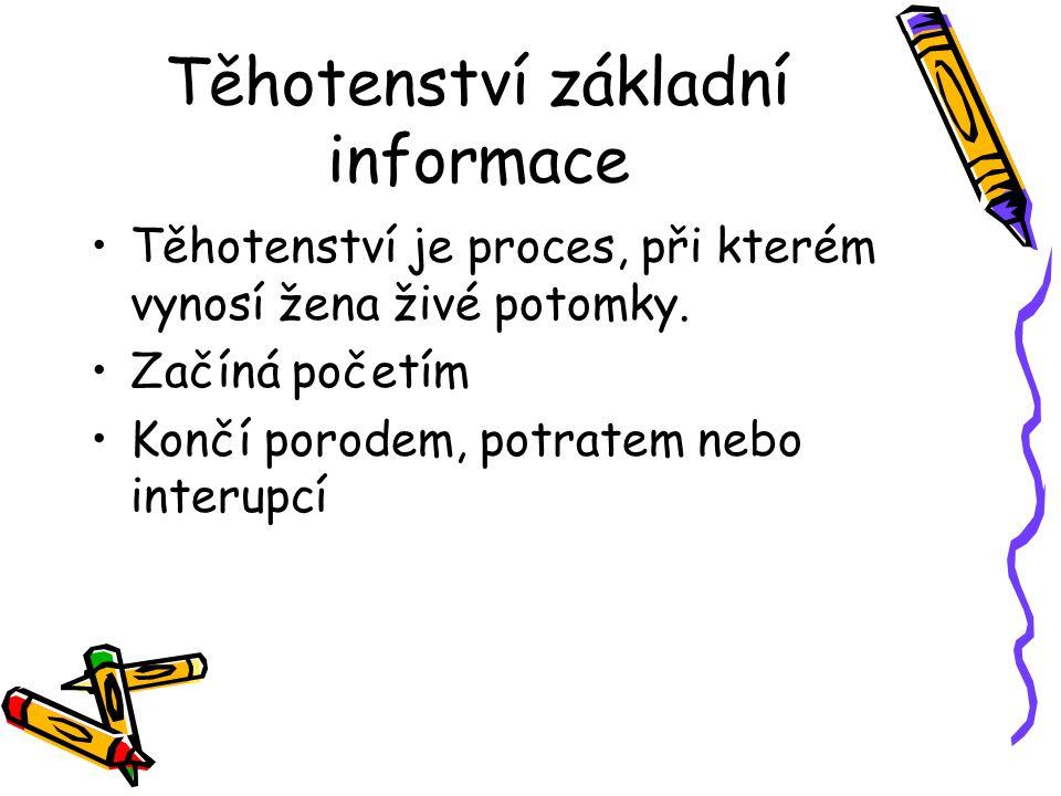 Těhotenství základní informace
