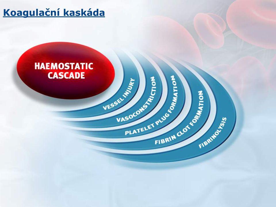 Koagulační kaskáda For internal use - not for distribution 5 5