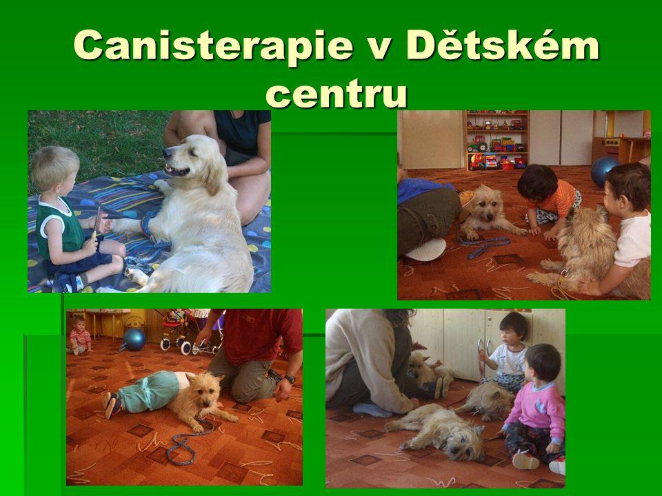 Canisterapie v Dětském centru
