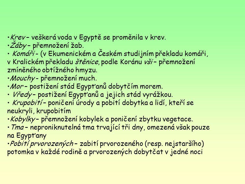 Krev – veškerá voda v Egyptě se proměnila v krev.