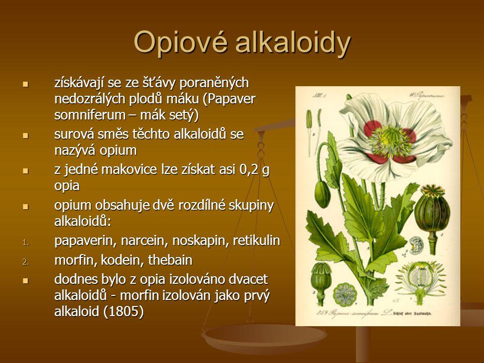 Opiové alkaloidy získávají se ze šťávy poraněných nedozrálých plodů máku (Papaver somniferum – mák setý)