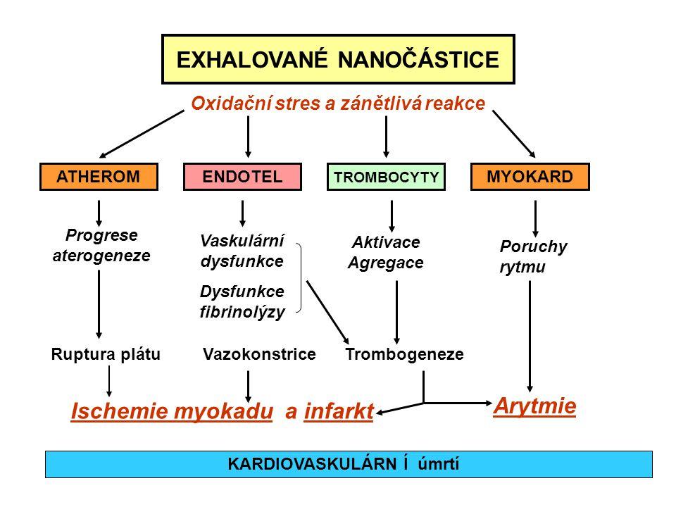 EXHALOVANÉ NANOČÁSTICE Arytmie Ischemie myokadu a infarkt