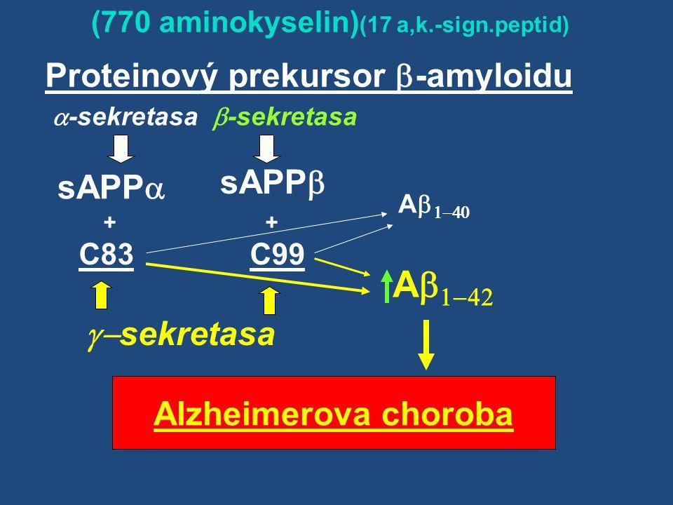 Ab1-42 Proteinový prekursor -amyloidu sAPPb sAPPa g-sekretasa