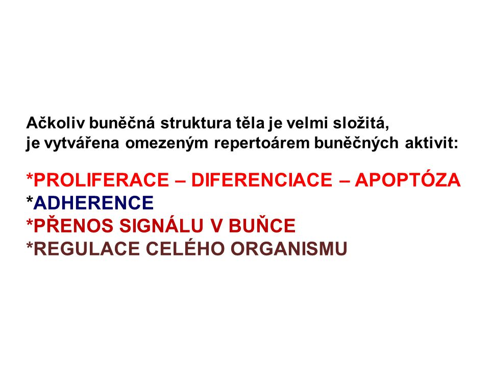 *PROLIFERACE – DIFERENCIACE – APOPTÓZA *ADHERENCE